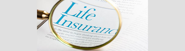 Magnifying glass over the words 'life insurance'